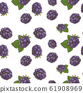Colored seamless pattern with blackberries in vintage style 61908969