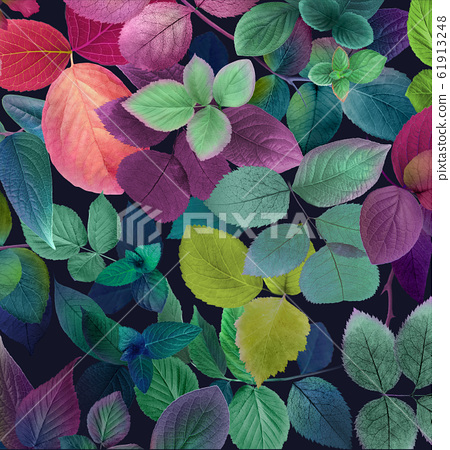 精緻優雅的水彩花和顏色豐富的葉子素材 61913248