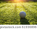 Golf ball on green grass in beautiful golf course 61936896