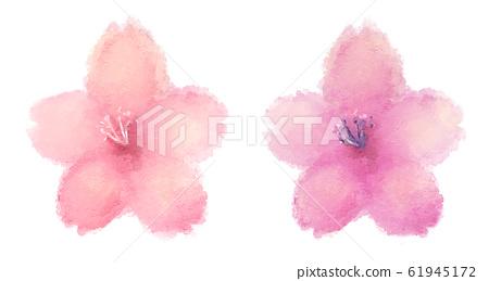 벚꽃 수채화 61945172
