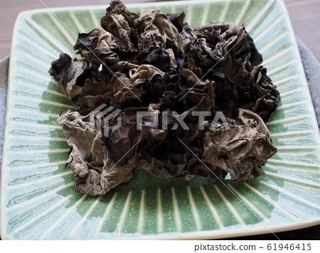 亞洲食物渴的蘑菇 61946415