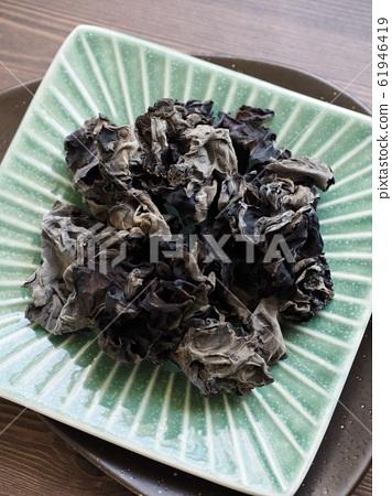 亞洲食物渴的蘑菇 61946419