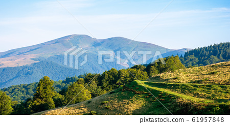 mountain landscape with clouds 61957848
