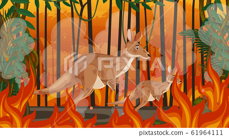 Scene with big wildfire with animal trapped in the 61964111