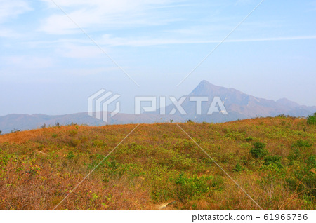 25 Dec 2008 The Landscape Of Hong kong Maclehose 61966736