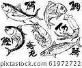 Illustration material: fish, seafood, hand-painted 61972722