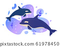 Two dolphins in the sea. Ocean fish. Underwater 61978450