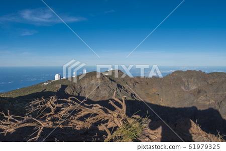 Dry tree roots at highest peak of La Palma Roque De Los Muchachos with big telescopes of Observatory at Caldera De Taburiente, blue sky and sea in background. La Palma, Canary Islands, Spain 61979325