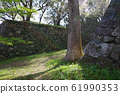 Looking up at Tamaru Castle Kitamaru 61990353