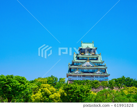신록의 오사카 성 61991828