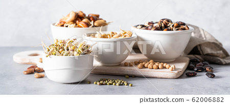 Selection of sprouted legumes - beans, chickpea, mung 62006882