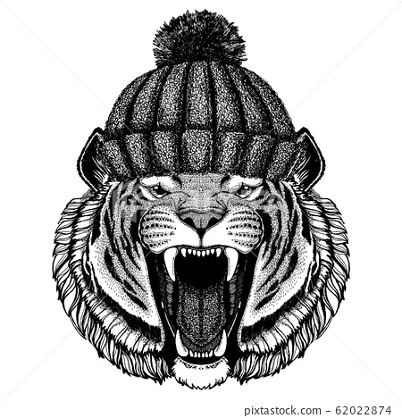Wild tiger Cool animal wearing knitted winter hat. Warm headdress beanie Christmas cap for tattoo, t-shirt, emblem, badge, logo, patch 62022874
