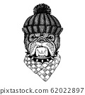 Dog Cool animal wearing knitted winter hat. Warm headdress beanie Christmas cap for tattoo, t-shirt, emblem, badge, logo, patch 62022897