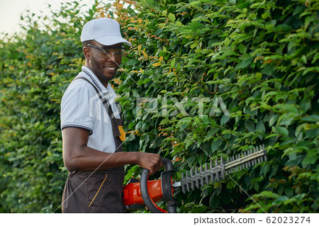 Handsome african man pruning green leaves with hand shears 62023274