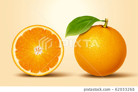 3d illustration citrus fruit 62033268