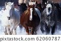在十勝農場運行新鮮的雪 62060787
