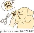 金毛小狗(剪头发) 62070407