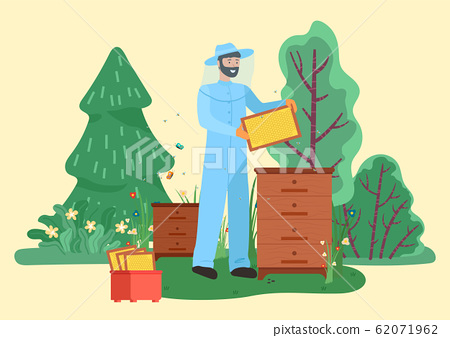 Farmer Beekeeping and Collecting Honeycomb Vector 62071962