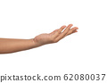 open the palm of the hand isolated on the white 62080037