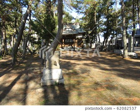 天王崎 야 사카 신사의 소나무 숲 62082537