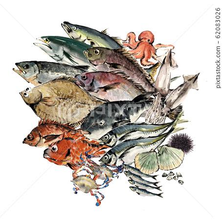 各種海鮮設置水彩 62083026