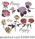 Collection of flowers. Set of flowers vector illustration.  62084384