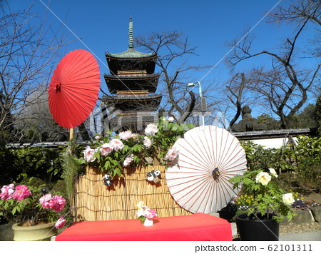 Shooting point with white button flowers and five-tiered tower of Ueno Toshogu Shrine 62101311
