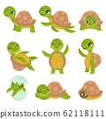 Cartoon smiling turtle. Funny little turtles, walking and swim tortoise animals vector set 62118111