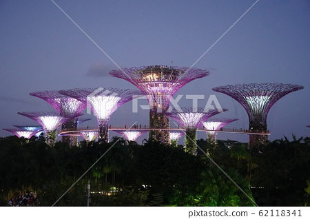 Gardens by the Bay 62118341