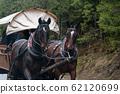 horse wagon pass in the Polish Tatras 62120699