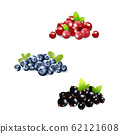 Set of realistic ripe berryes on a white background.The berryes for advertising,labels,organic agriculture symbol. 62121608