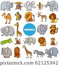 cartoon wild animal characters large set 62125942