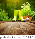 Outdoor gardening tools on old wood table 62154423