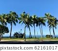 Walk Waikiki Beach 62161017