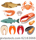 Seafood. Illustration of fish, shrimp, mussels and 62163666