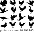 Poultry silhouettes collection 62168445