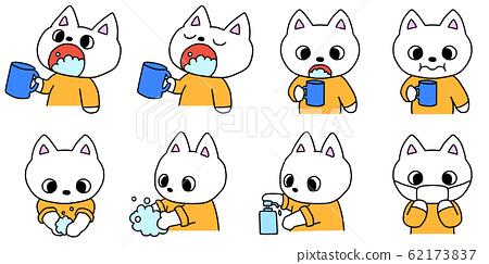 "Kitten disease prevention ""gargle, hand washing, disinfection, mask"" 62173837"