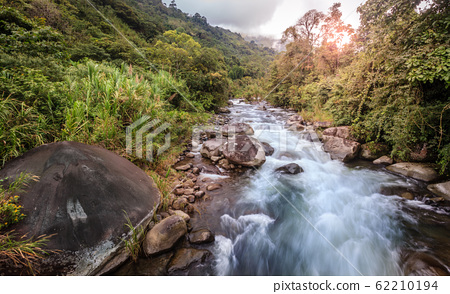 Mountain stream in Costa Rican forest 62210194