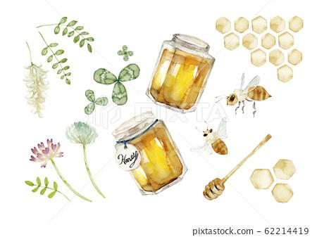 蜂蜜卡通插圖水彩插圖 62214419