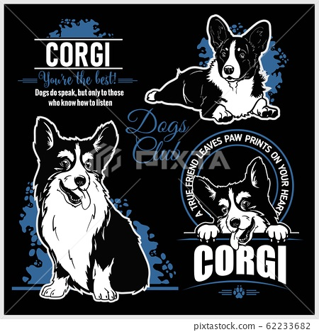 Corgi - vector set for t-shirt, logo and template badges 62233682