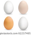 Realistic multi-colored eggs. Set of 3d eggs 62237465