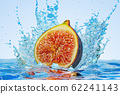 Common fig cut in half with water splashes 62241143