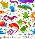 Seamless pattern wild cute cartoon animal flat isolated vector illustration. Amphibians reptiles lizard frog snake gecko triton decoration background. 62244713