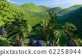 Jungle hills in Okinawa, Japan 3d rendering 62258944