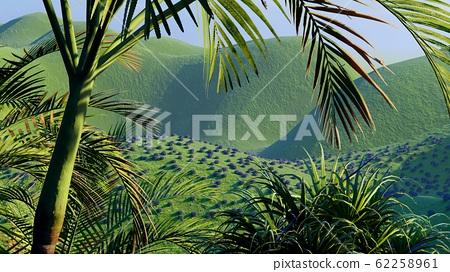 Jungle hills in Okinawa, Japan 3d rendering 62258961