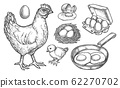 Sketch chicken products and farm poultry eggs 62270702