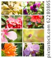 Design cards with floral collection 62280865