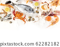 Fish and seafood, overhead shot on a white background with copy space. Sea bream, scallops, crab, sardines, squid, clams etc 62282182