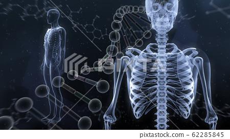 인체 뼈 메디컬 인간 체 의료 의학 두개골 엑스레이 3D 일러스트 CG 배경 62285845