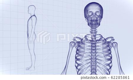 인체 뼈 메디컬 인간 체 의료 의학 두개골 엑스레이 3D 일러스트 CG 배경 62285861